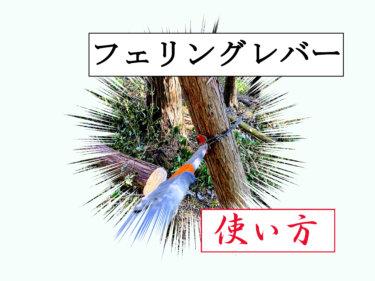 【かかり木処理】正しいフェリングレバーの使い方【画像解説あり】